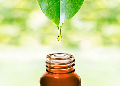 Raindrop Therapy Massage Power of Touch Johnson City TN